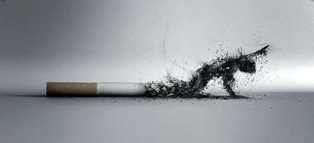 hamvado_cigarettaveg