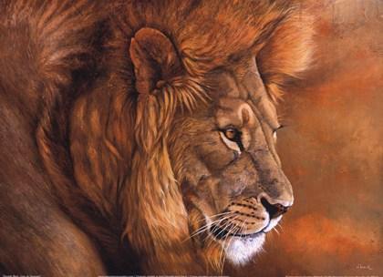 lion-du-serengeti-print